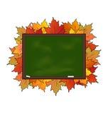 Consiglio scolastico con le foglie di acero isolate Fotografie Stock Libere da Diritti