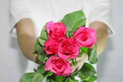 Consign the roses to you. Royalty Free Stock Images