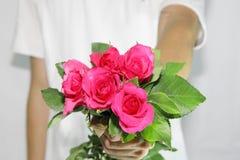 Consigne-lhe as rosas Imagens de Stock