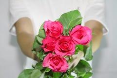 Consigne-lhe as rosas Imagens de Stock Royalty Free
