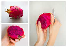 Consistent process of peeling exotic Dragon fruit isolated on grey background. Stock Photos