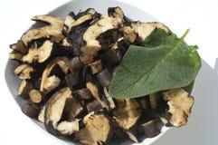 Consolda-maior; Comum; medicinal, raizes Foto de Stock