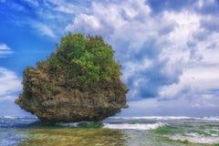 Console bonito Vista da praia tropical agradável com palmas e pedras ao redor Conceito do feriado e das férias Tropical e fotografia de stock royalty free