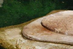 Console da rocha Fotografia de Stock Royalty Free