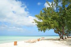Console de Bora Bora Fotografia de Stock Royalty Free