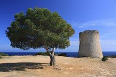 Console de Mallorca - Cala Calobra Fotografia de Stock