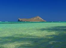Console Havaí do coelho no oceano azul de cristal fotos de stock royalty free