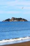 Console perto da praia de Iztuzu e de uma gaivota Imagem de Stock Royalty Free