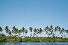 Console tropical Imagens de Stock Royalty Free