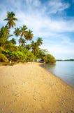 Console tropical Foto de Stock Royalty Free