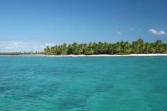 Console tropical com as palmeiras no oceano Imagem de Stock Royalty Free