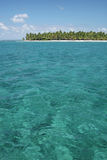 Console tropical com palmeiras Imagens de Stock Royalty Free