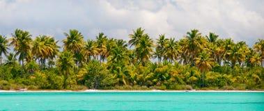 Console tropical - mar, céu e palmeiras Fotos de Stock Royalty Free