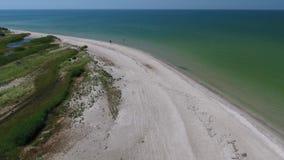 Console verde bonito Praias de Sandy brancas vídeos de arquivo