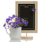 Consolida flowers menu Royalty Free Stock Photo