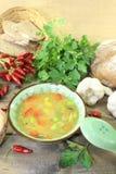 Consommé asiático da galinha com salsa Imagem de Stock