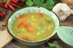 Consommé asiático da galinha com vegetais Imagem de Stock Royalty Free