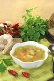 Consommé das aves domésticas com salsa lisa Fotografia de Stock