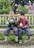 consommation d'enfants de pommes Photographie stock