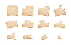 Consommation d'une tranche de pain complet Photos stock