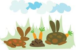 Consommation de lapins Images libres de droits