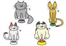 Consommation des chats Images stock