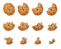 Consommation du biscuit Image stock