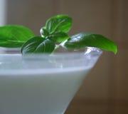 Consommation légère - yaourt Image libre de droits