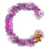 Consonante C de la carta alfabética Imágenes de archivo libres de regalías