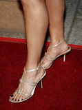 Constance Marie Stock Image