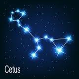 A constelação Cetus protagoniza no céu noturno. ilustração do vetor