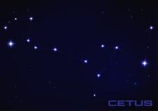 Constelação de Cetus Imagem de Stock