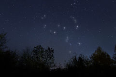 Constelação de Orion no céu noturno real, caçador Fotografia de Stock Royalty Free