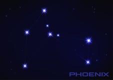 Constelação de Phoenix Imagem de Stock