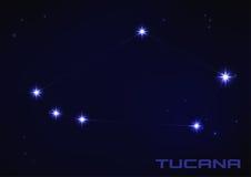 Constelação de Tucana Foto de Stock Royalty Free