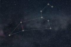 Constelação do Leão Linhas da constelação do Leão do sinal do zodíaco ilustração do vetor