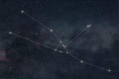 Constelação do Touro Linhas de Taurus Constellation do sinal do zodíaco ilustração royalty free