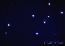 Constelação dos cachorrinhos Fotografia de Stock Royalty Free