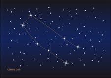 Constelação dos Gemini ilustração do vetor