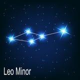 A constelação Leo Minor protagoniza na noite Foto de Stock