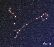 Constelação Pisces ilustração do vetor