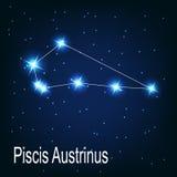 A constelação Piscis Austrinus protagoniza em ilustração stock