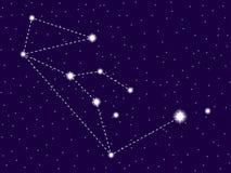 Constela??o do l?pus C?u nocturno estrelado Objetos do espaço, galáxia Vetor ilustração do vetor