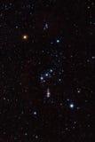 Constelación de Orion Imagen de archivo