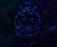 Constelación del espacio de un lobo ilustración del vector