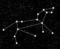 Constelação Leo Fotografia de Stock
