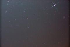 Constellatie Canis Stock Afbeeldingen