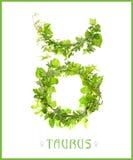 Constellatie taurus stock foto's