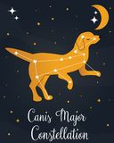 The constellation Canis Major star in the night sky. With the dog silhouette. Vector illustration Stock Photos