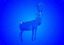 Constellation Capricorn Royalty Free Stock Images